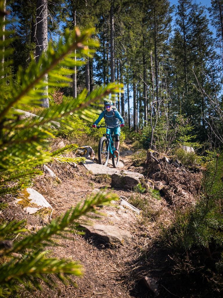 Steiniger-Trail-Baiersbronn-MTB
